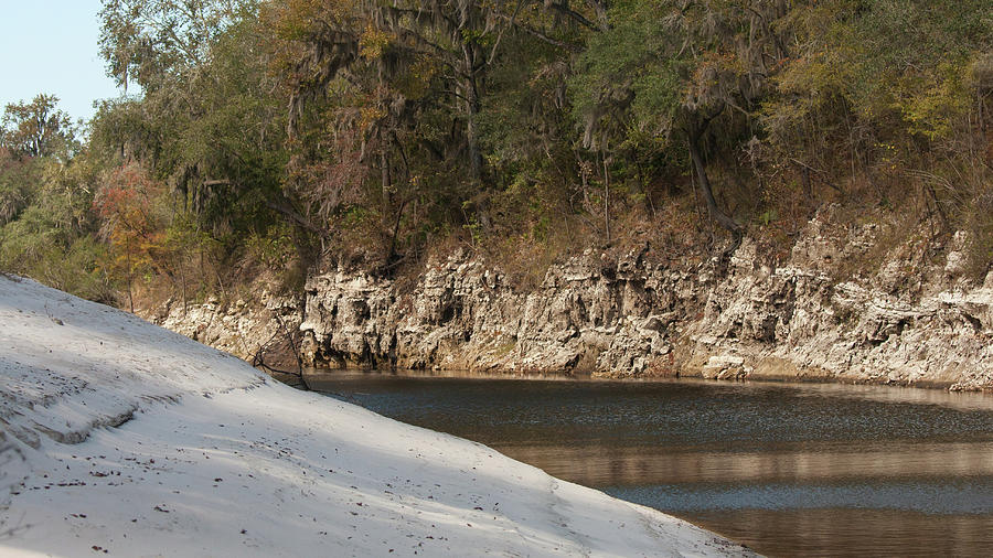 Suwannee River Sand Water And Rock Photograph