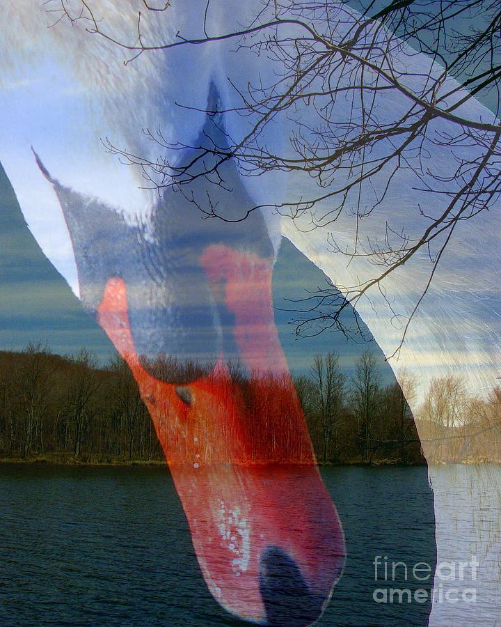 Collage Photograph - Symbiosis by Priscilla Richardson