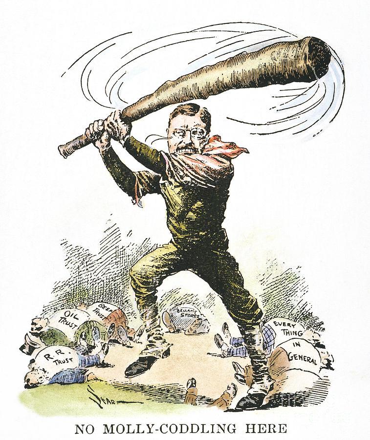 1904 Photograph - T. Roosevelt Cartoon, 1904 by Granger