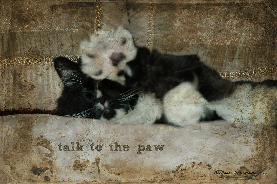 Talk To The Paw is a photograph by Roe Rader which was uploaded on ...