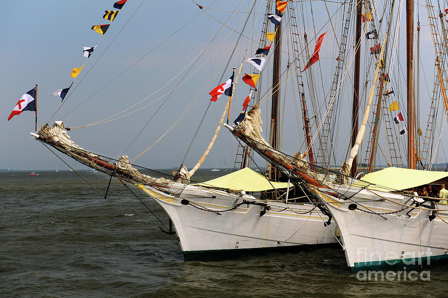 Tall Ships Southern Breeze Photograph