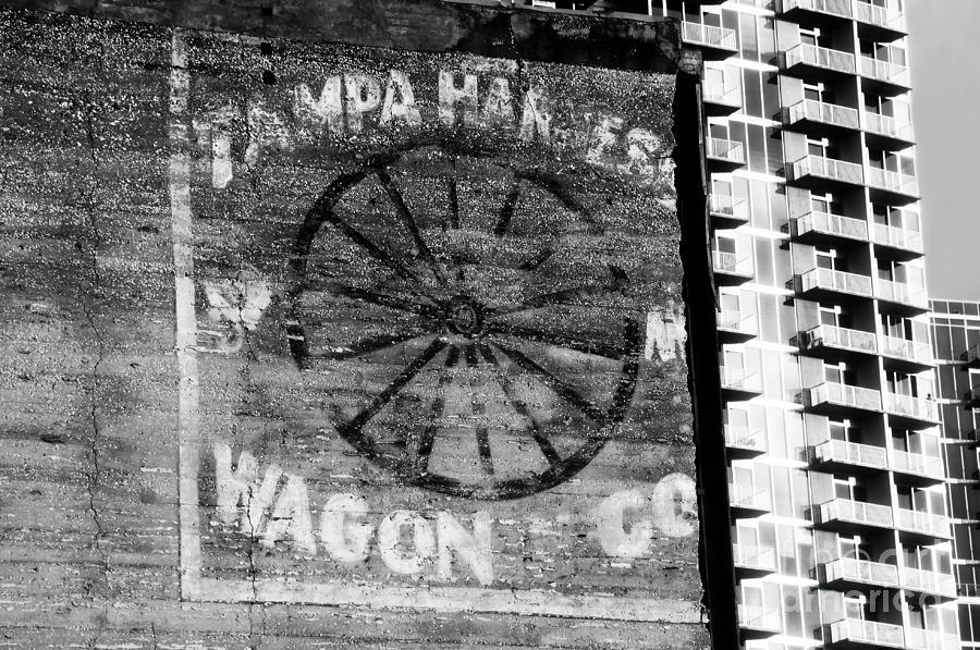 Tampa Harness Wagon N Company Photograph