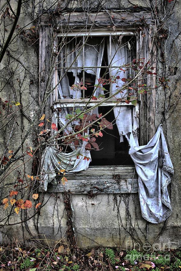 Old Photograph - Tattered Curtain Fall 09 No.2 by Sari Sauls