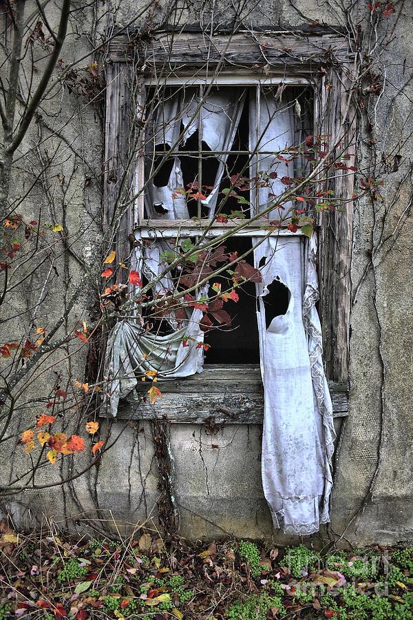 Old Photograph - Tattered Curtain Fall 09 No.3 by Sari Sauls
