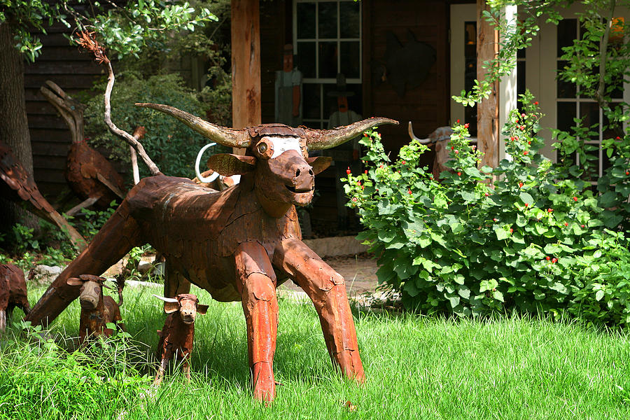 Cattle Photograph - Texas Longhorn Sculpture by Linda Phelps