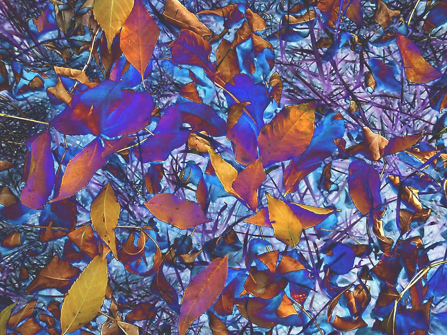 Textured Blue Photograph