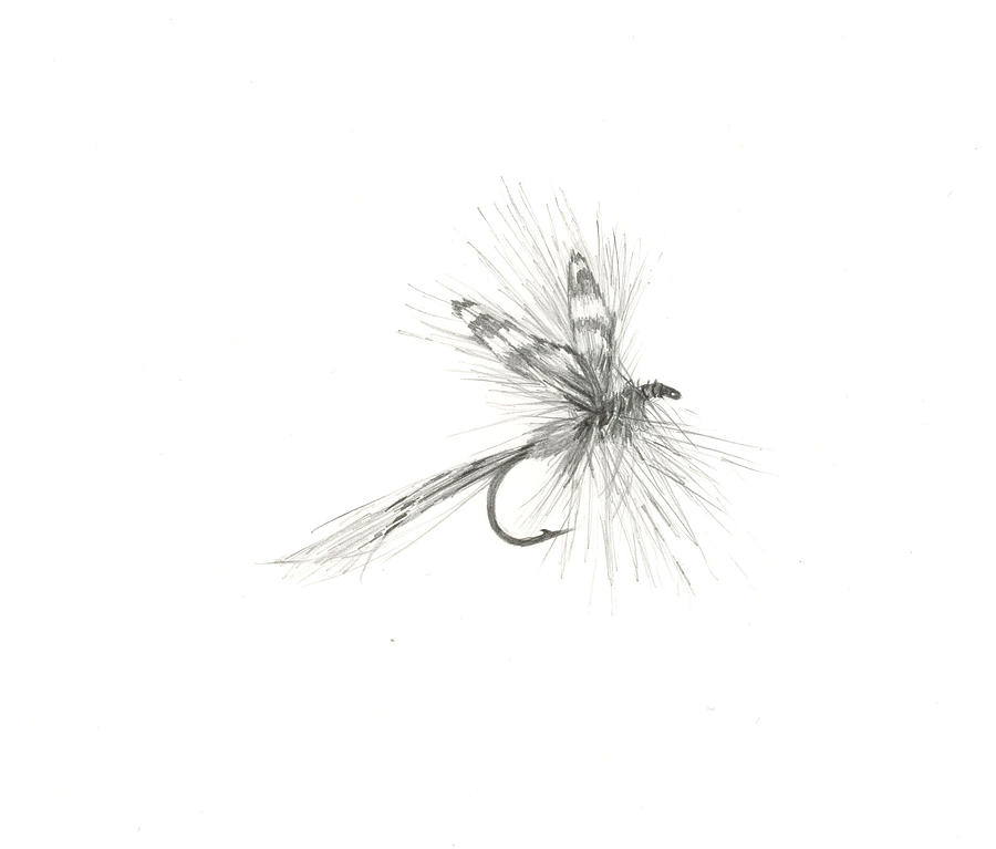 fly fishing drawing - photo #21