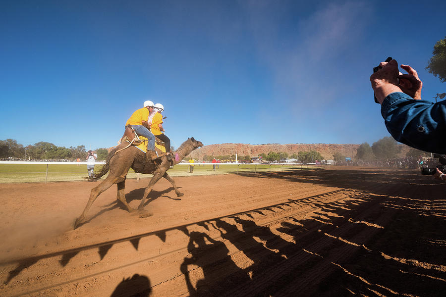 Alice Springs Camel Cup Photograph