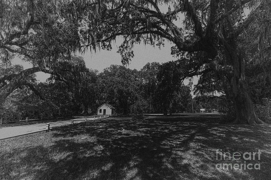 The Antebellum South Photograph
