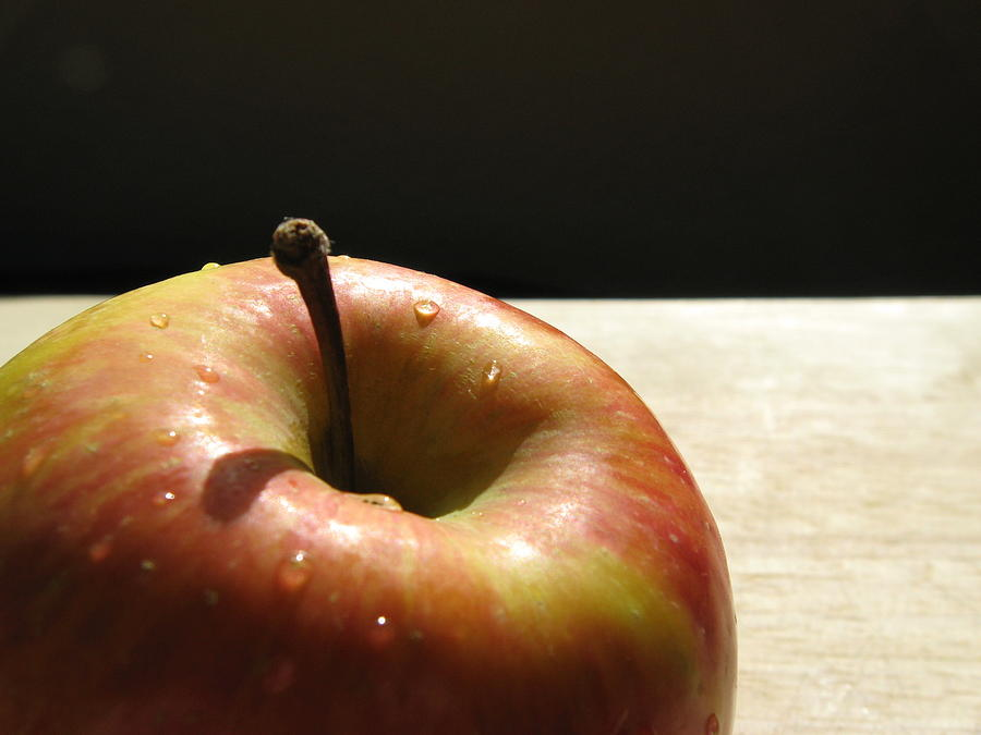 Apple Photograph - The Apple Stem by Kim Pascu
