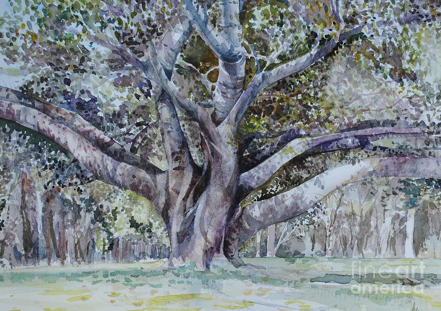 Banyan Tree Painting Banyan Tree Paintings - The