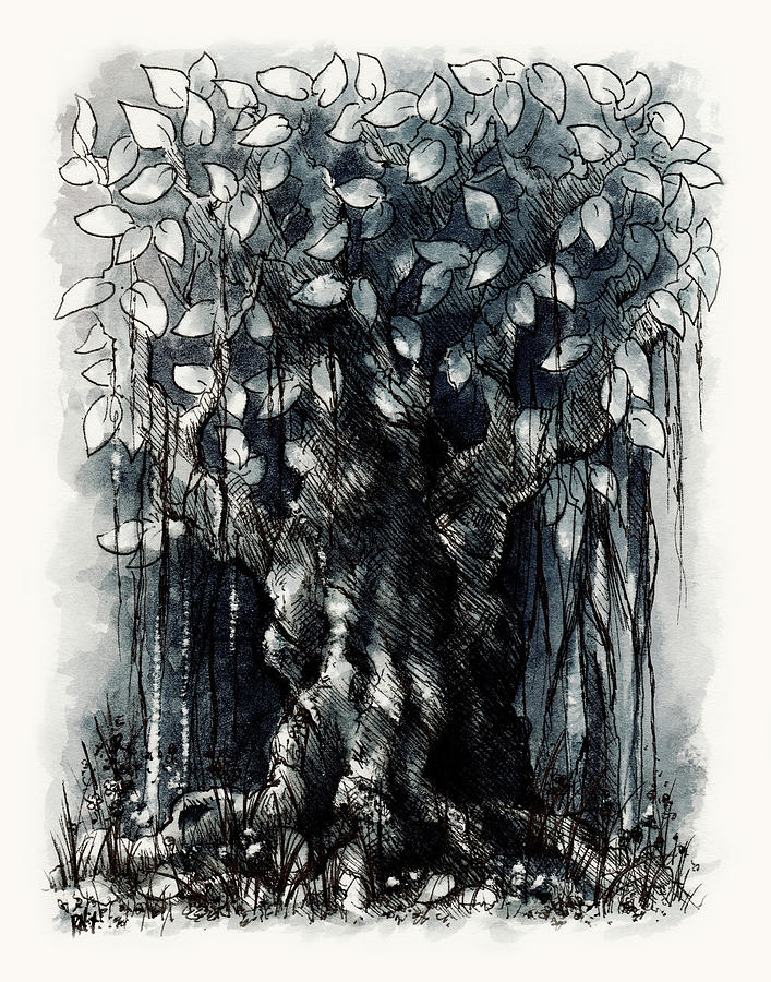 Tree Drawing - The Beautiful Tree by Rachel Christine Nowicki