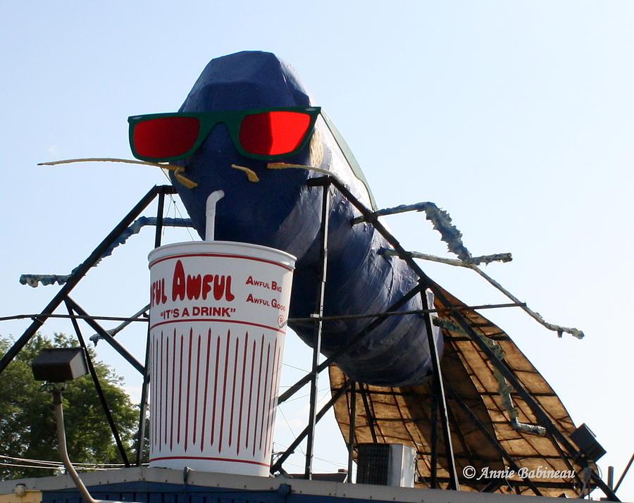 Big Photograph - The Big Blue Bug by Anne Babineau