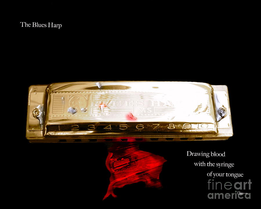 Harmonica Photograph - The Blues Harp by Steven  Digman