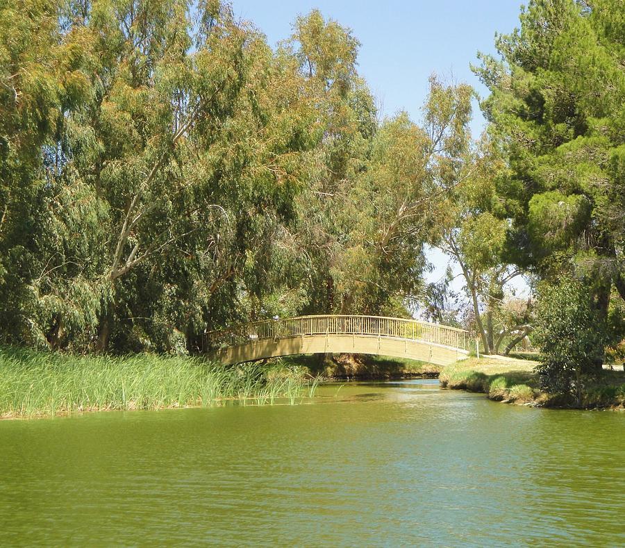 Landscape Painting - The Bridge by Steve Ponting
