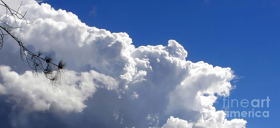 The Cloud Photograph