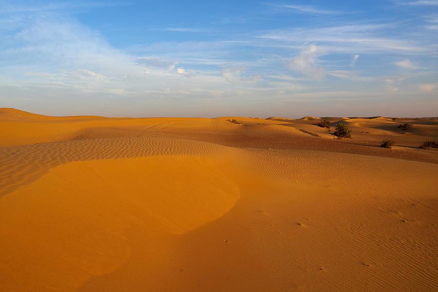 The Desert Photograph