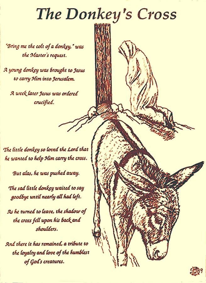 Spiritual Drawing - The Donkeys Cross by Mary Singer