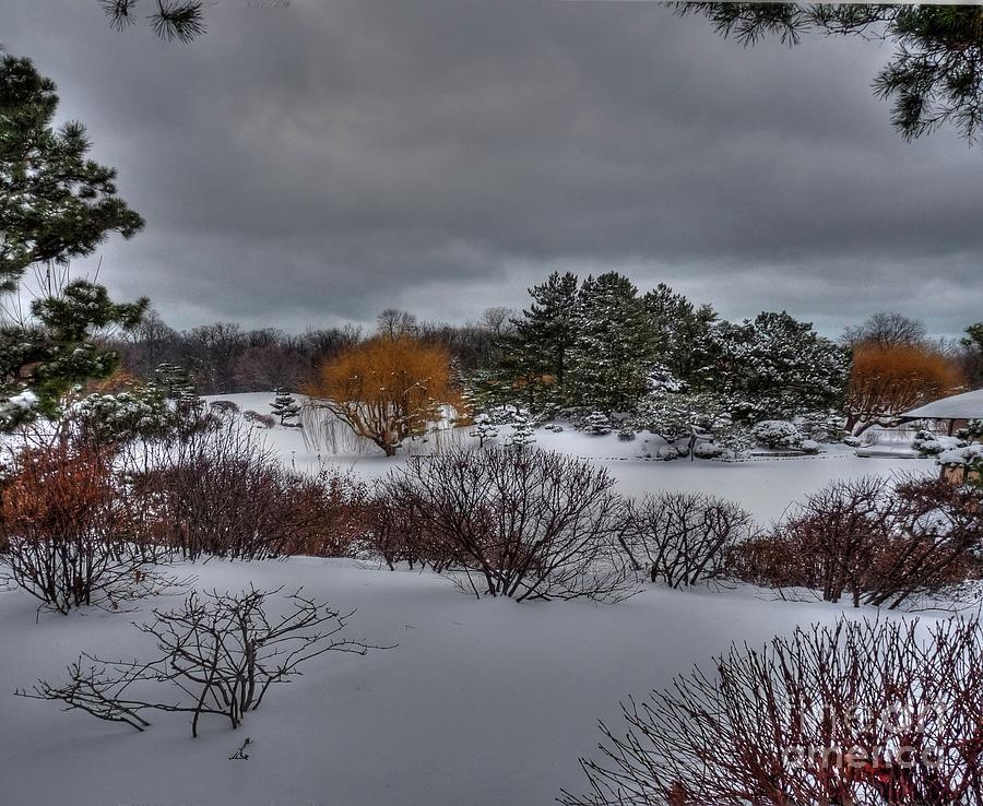 Chicago Botanical Garden Photograph - The Garden In Winter by David Bearden