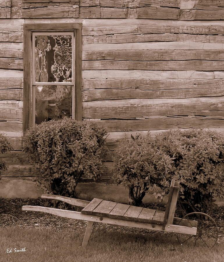 The Gardener Photograph - The Gardener by Ed Smith