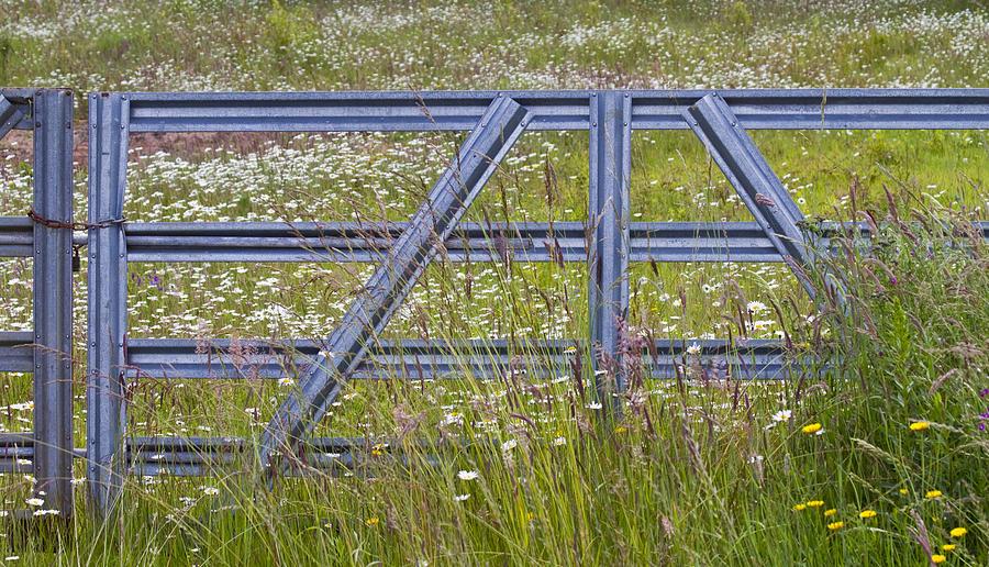 The Gate  II Photograph