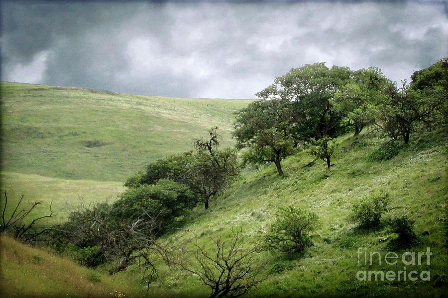 Landscape Photograph - The Green Hills Of Home by Ellen Cotton