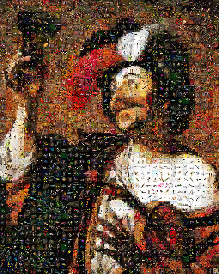 Mosaic Digital Art - The Happy Violinist With A Glass Of Wine by Gilberto Viciedo