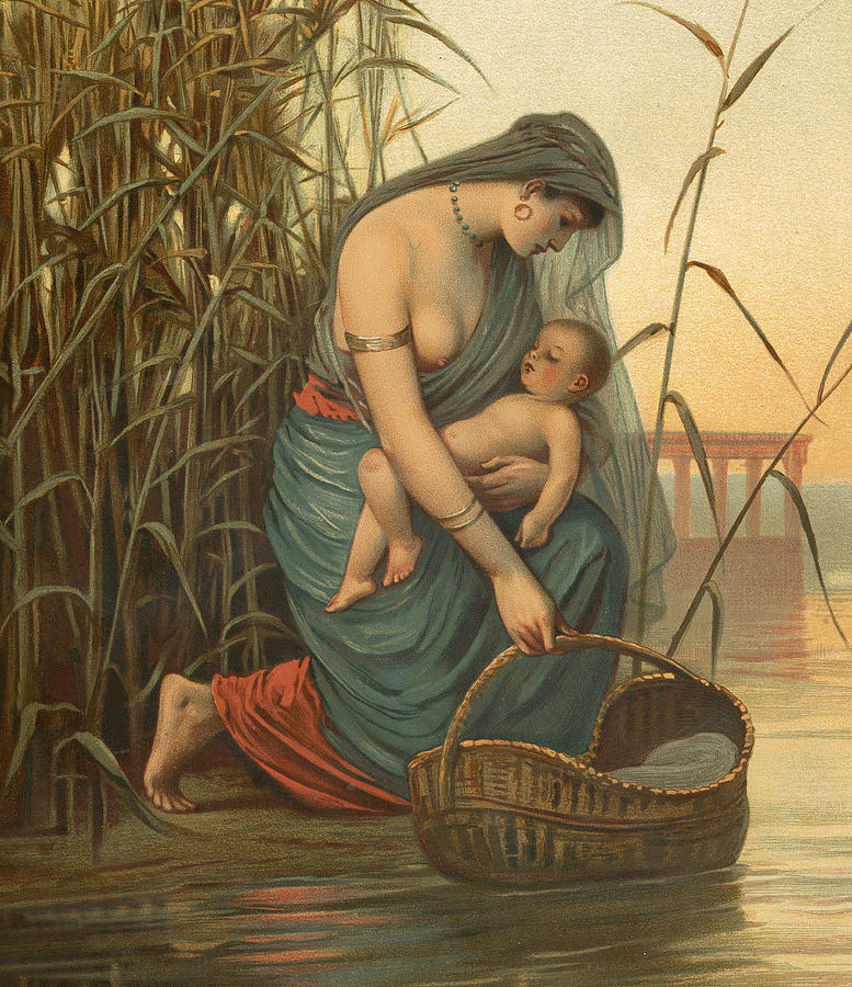 Image result for baby in a basket painting