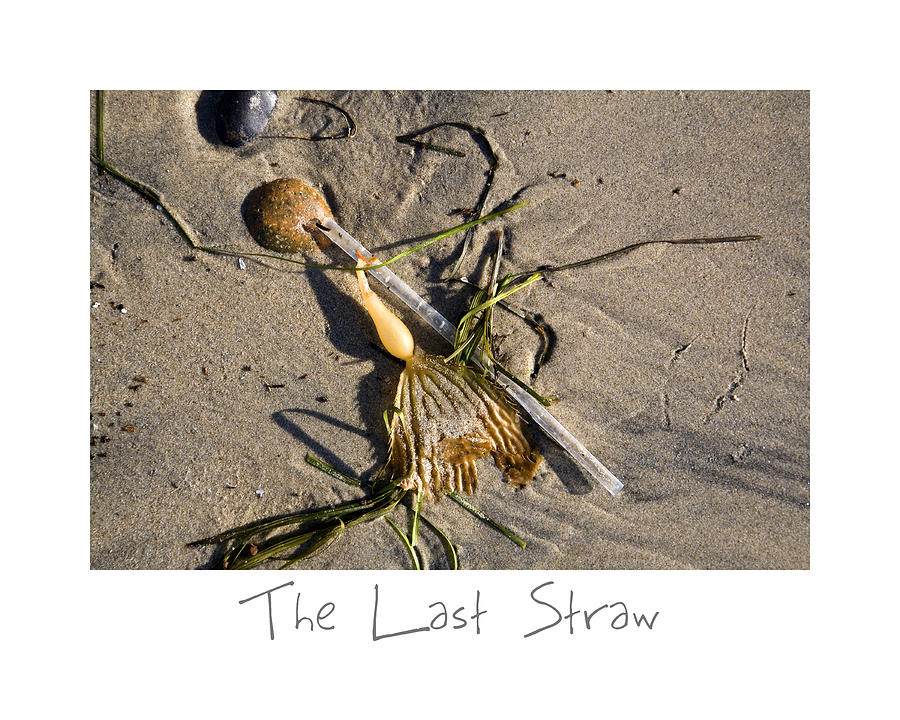 Beach Art Photograph - The Last Straw by Peter Tellone