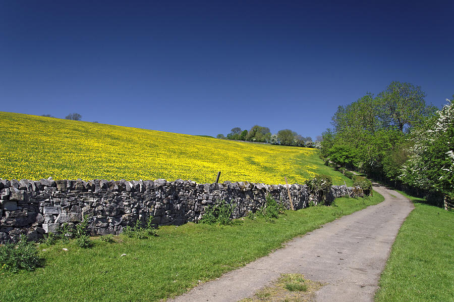 The Limestone Way - Near Thorpe Photograph