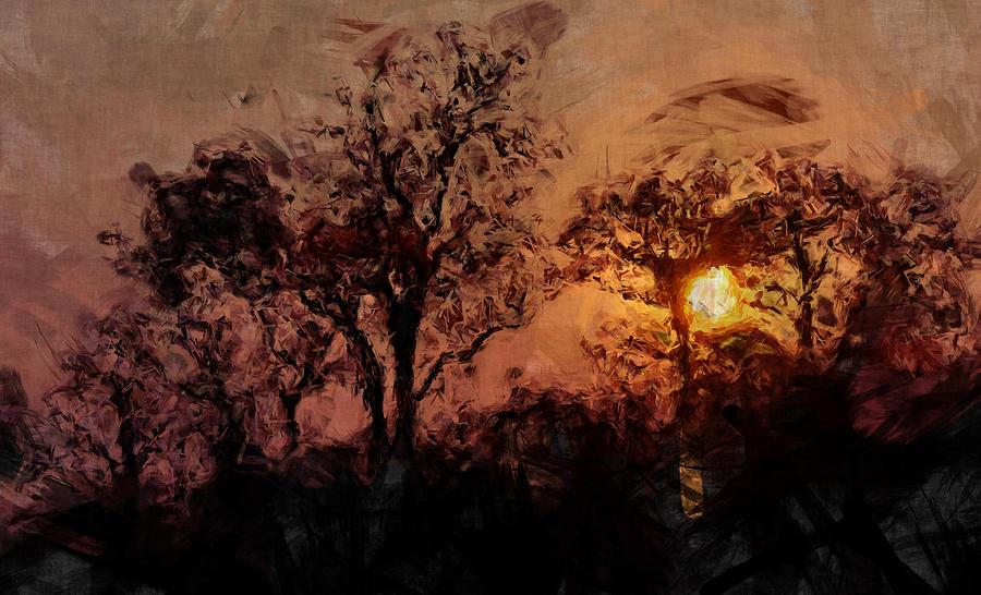 Sunset Photograph - The Madness Of Twilight by Mark Denham