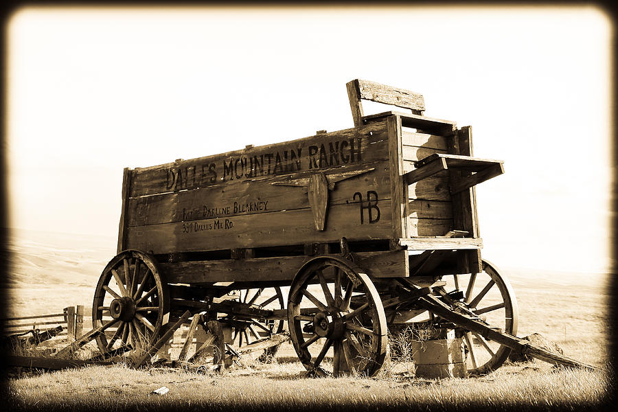 Wood Photograph - The Old Wagon by Steve McKinzie