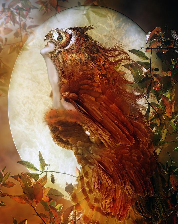 Owl Digital Art - The Owl by Mary Hood