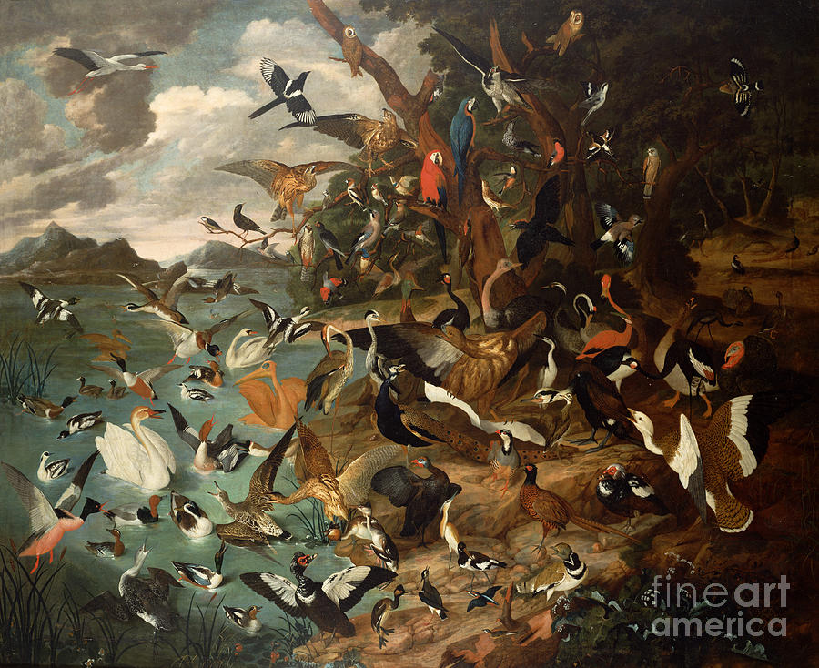 The Parliament Of Birds Painting