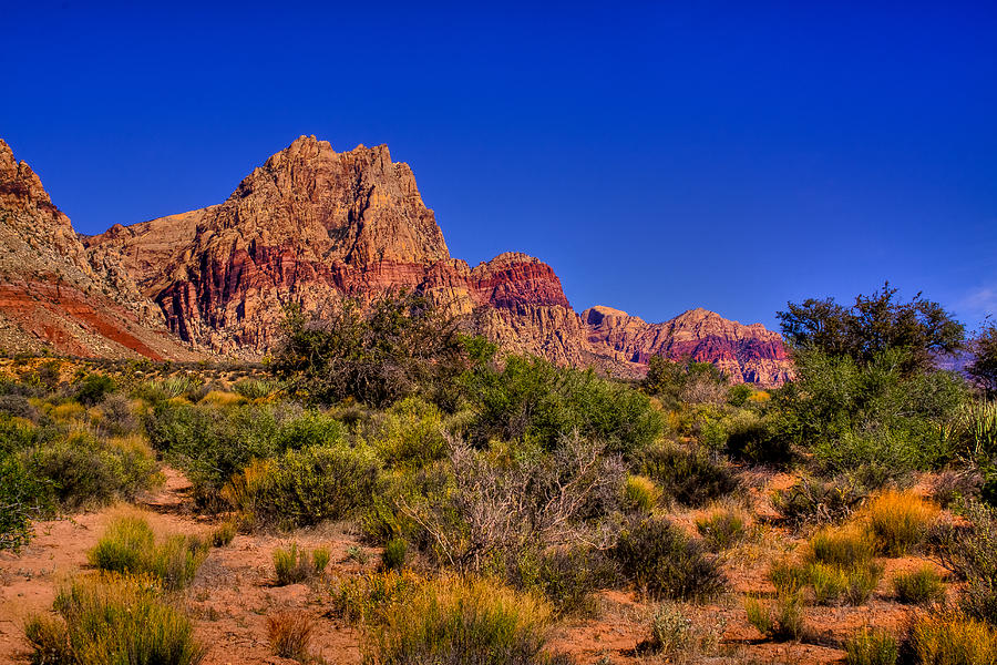Red Rock Photograph - The Red Rock Canyon At Bonnie Springs Ranch by David Patterson