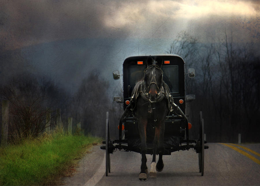 Amish Photograph - The Road Less Traveled by Lori Deiter
