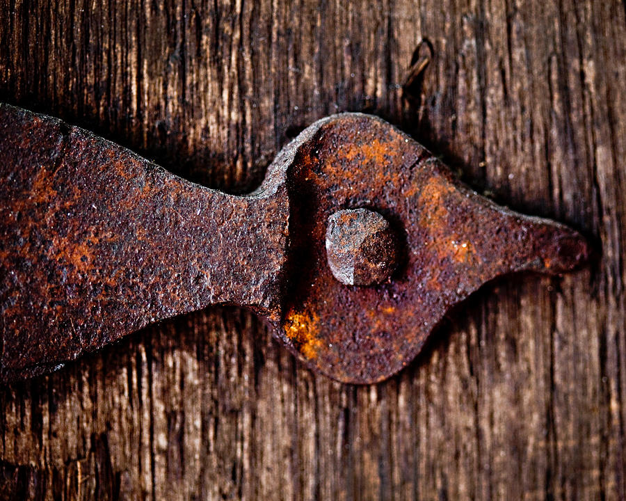 Door Photograph - The Rusty Hinge by Lisa Russo