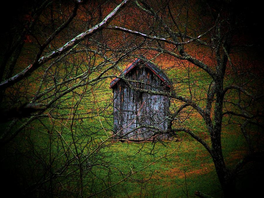 Woods Photograph - The Shed by Michael L Kimble