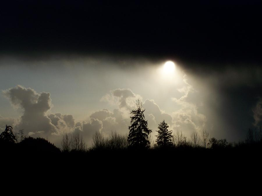 Digital Photography Photograph - The Storm Looms by Laurie Kidd