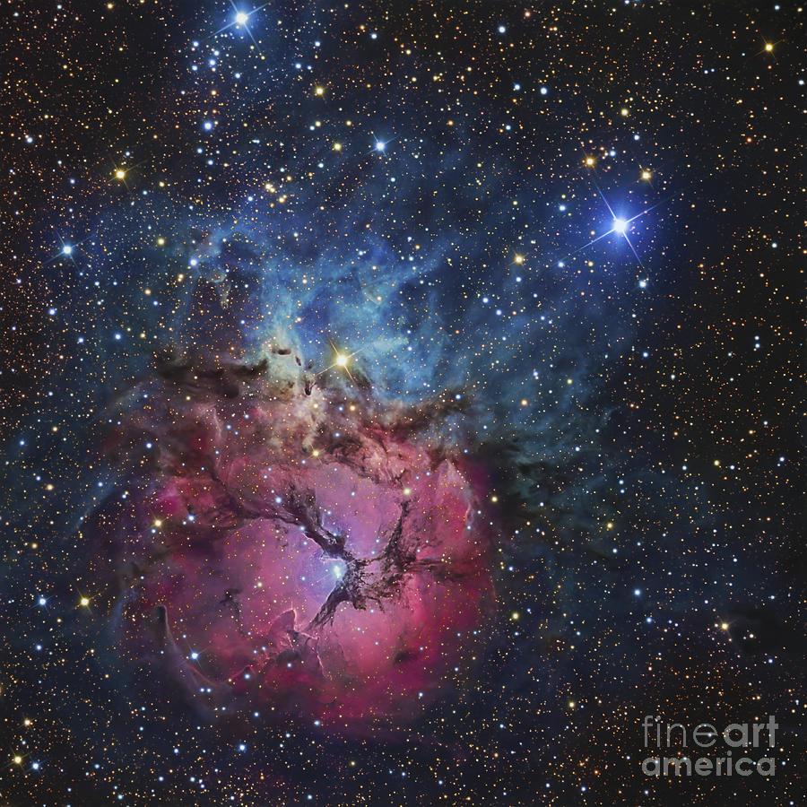 The Trifid Nebula Photograph