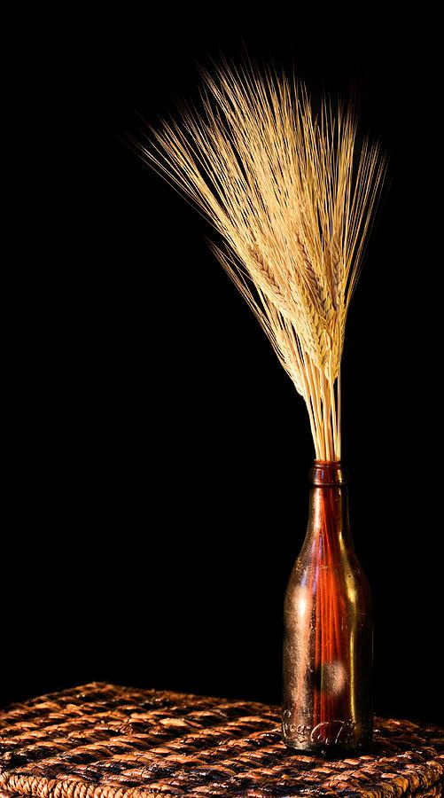 The Vase Photograph