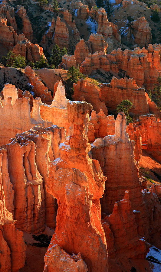 Thors Hammer At Sunrise In Bryce Canyon Photograph