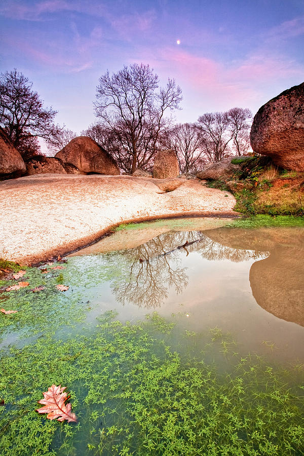 Sanctuary Photograph - Thracian Sanctuary by Evgeni Dinev