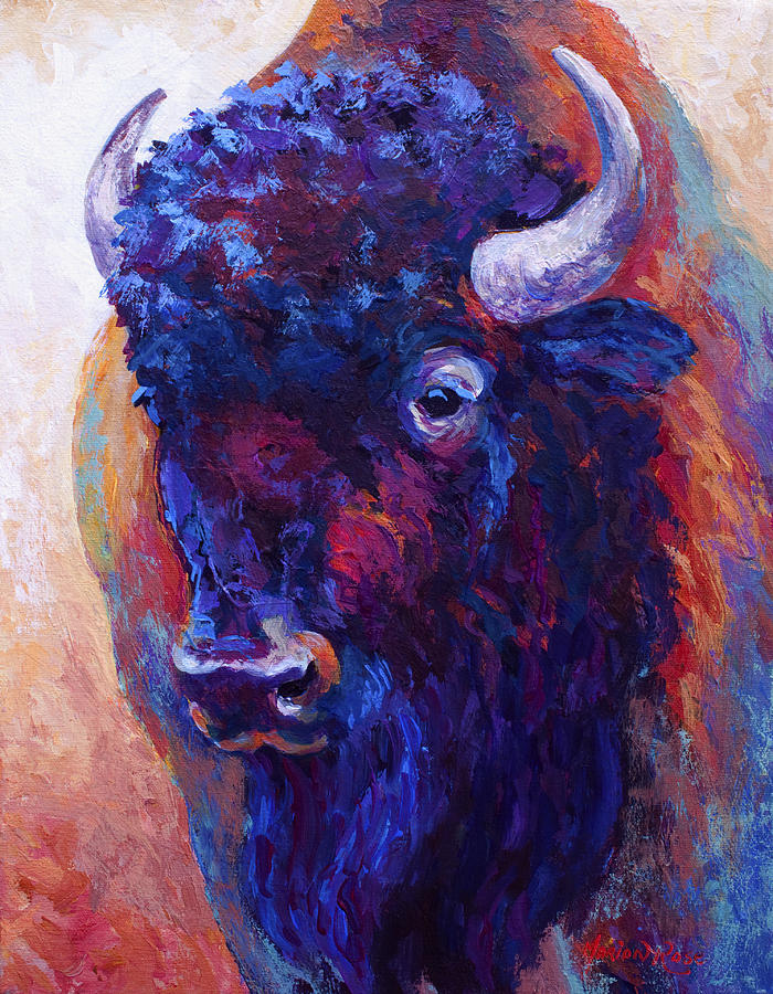 Bison Painting - Thunder Horse by Marion Rose