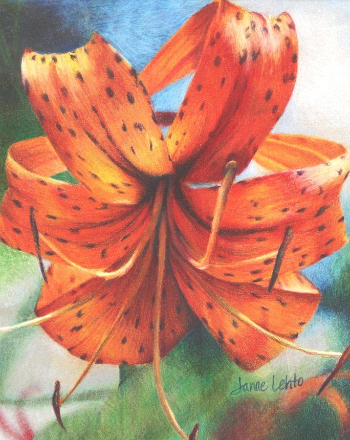 Tiger Lily Painting by Janae Lehto
