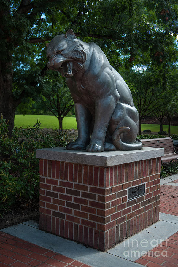 Tiger Statue Photograph