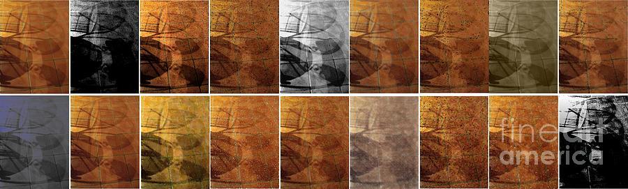 Tiled Tile Shadows Digital Art