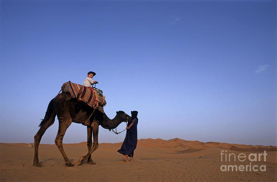 Touareg Man Leading Boy Riding Camel In Sahara Desert Photograph