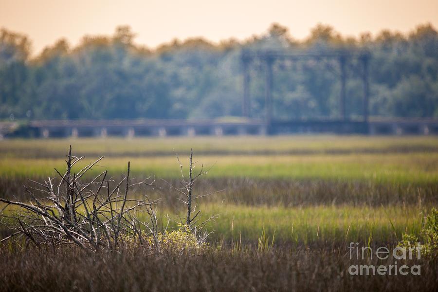 Train Birdge Over The Marsh Photograph