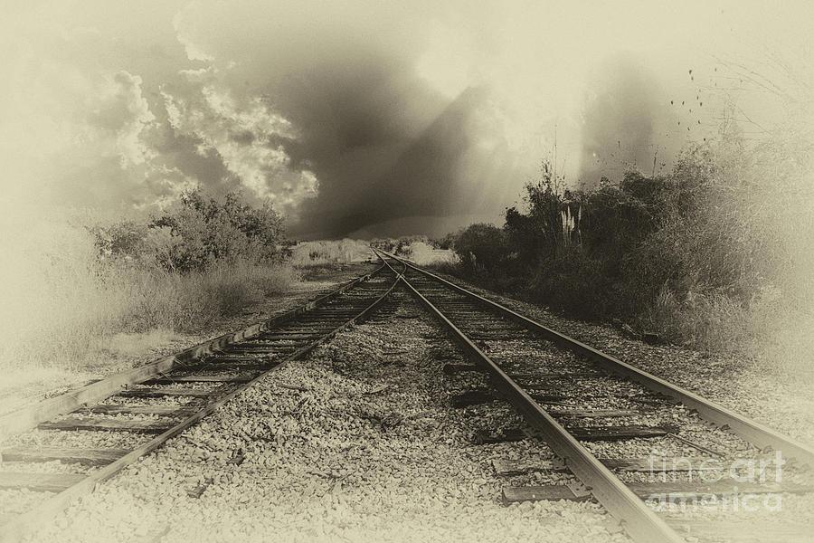 Train Merge Photograph